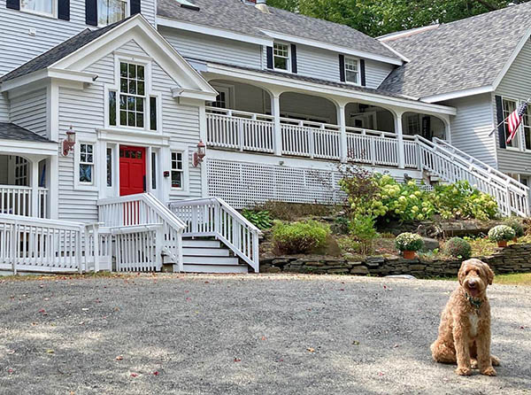 Pet Friendly Lodging 1